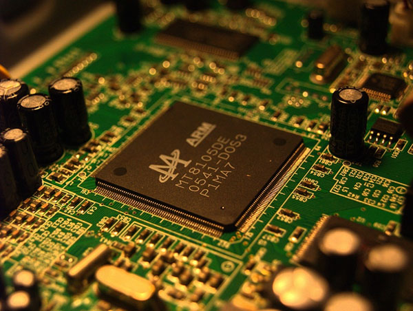 Picture of Microchip